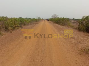 TITLED LAND AT DAWA FOR SALE