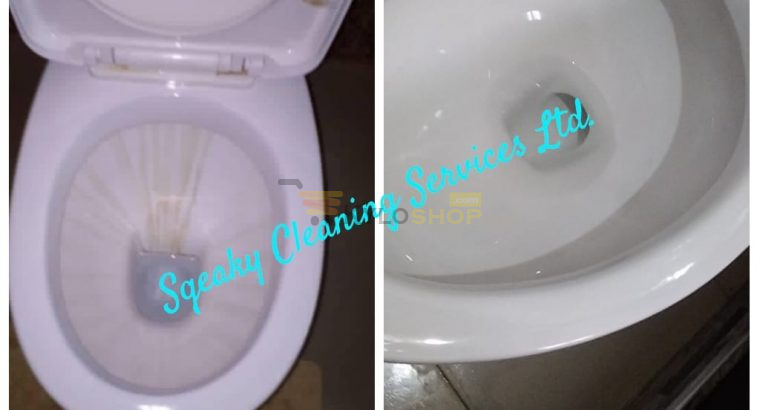 Bathroom cleaning by trained professional Accra